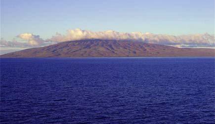 Pearl Harbor Tours >> Maui Lanai Dolphins   Maui Adventure Cruises