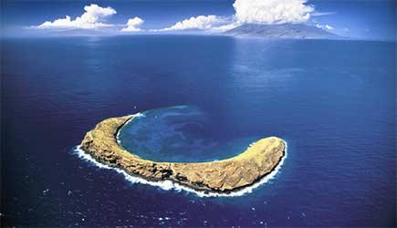Snorkel Maui Molokini Molokini Snorkel Tours
